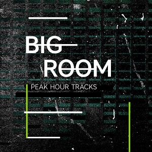 Mojo Beatport Peak Hour Feature